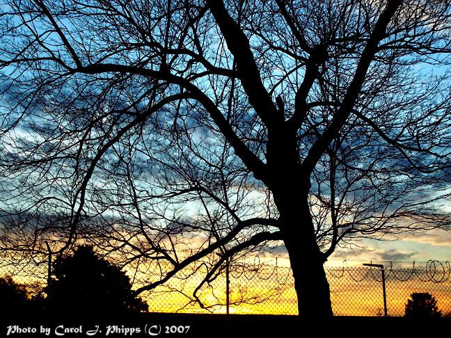 Sunset Over Neighborhood Graveyard!