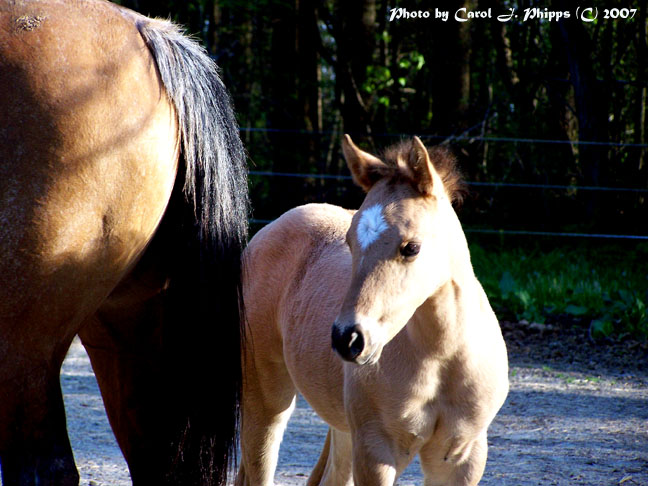 Mother and New Pretty Girl!