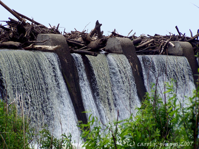 Falls of the Ohio.