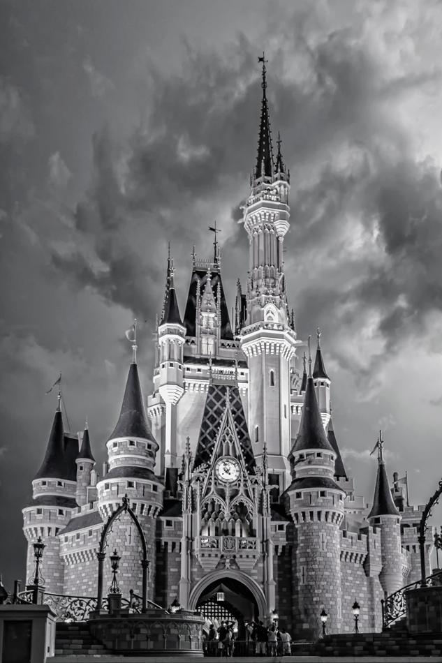 Disney World Castle Logo Black And White DanDisney Castle Black And White