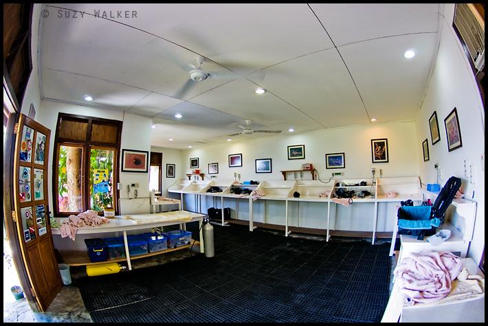 Lembeh Resort - Camera room