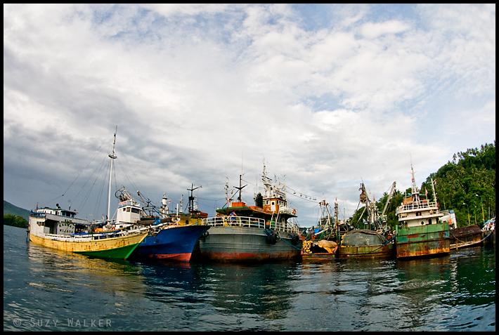 Lembeh Port