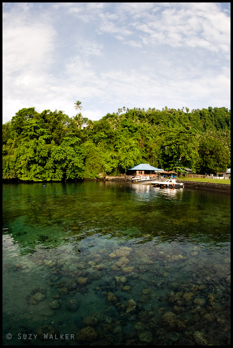 Leaving Lembeh - at the port