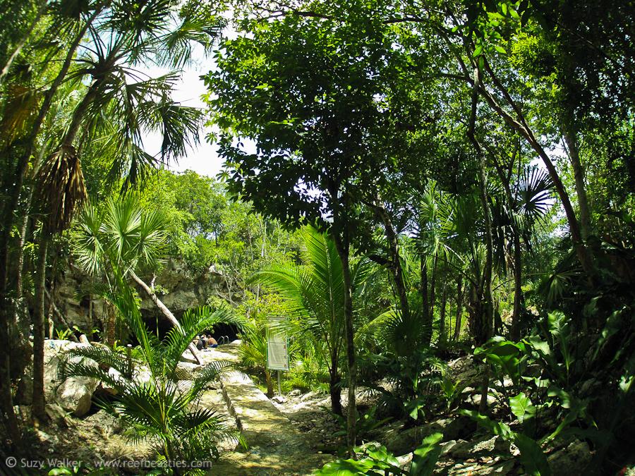 Kukulkan Cenote 1