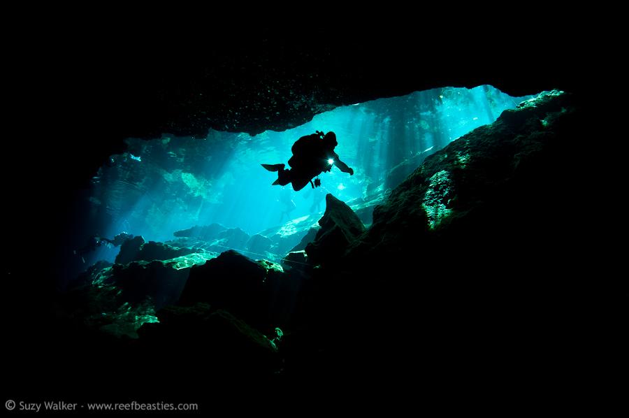 Kukulkan Cenote 6