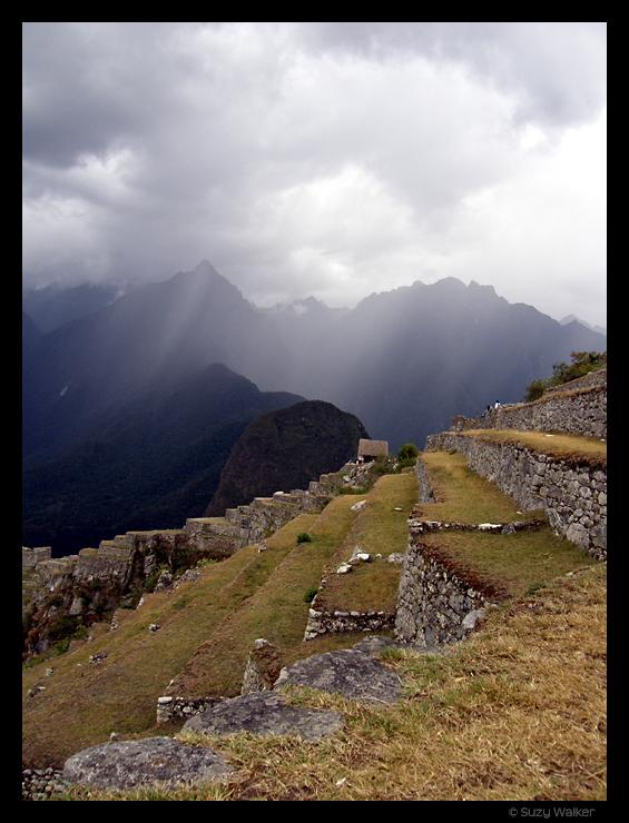 Agricultural terraces, Machu Picchu