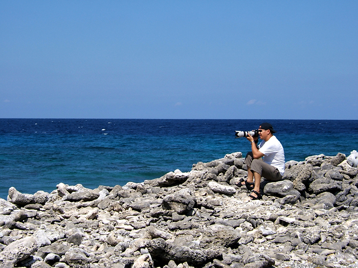 Long Lens, Bonaire