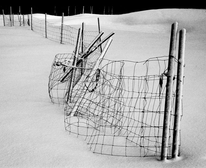 Fence in snow #5