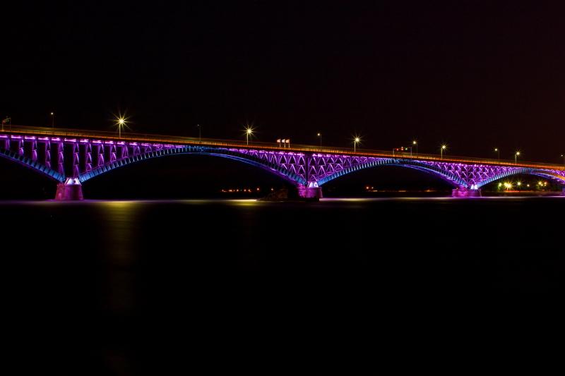 Peace Bridge_001.JPG
