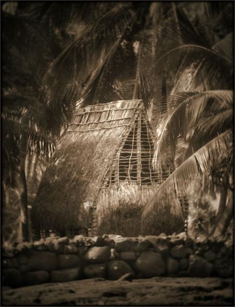 Hale At Puuhonua O Honaunau