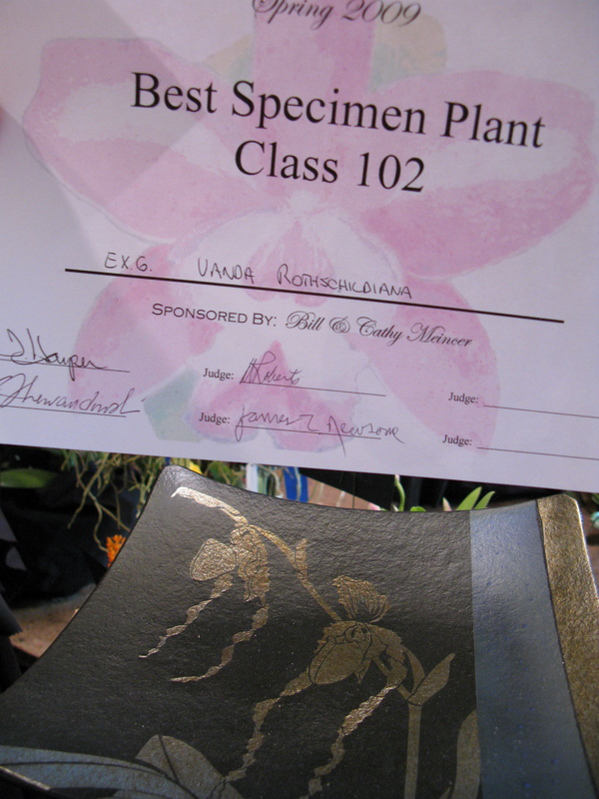 and, the Best Specimen Plant trophy