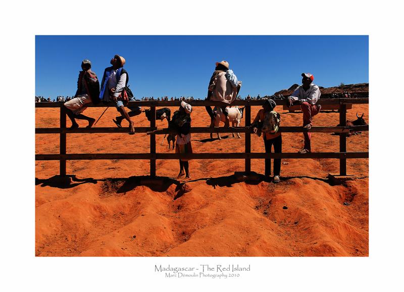 Madagascar - The Red Island 324