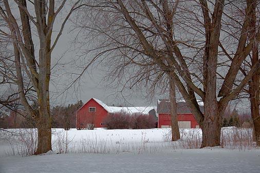 Snowscape 20100116