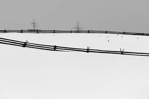 Split Rail Snowscape 14269