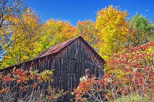 Autumn Barn 17665
