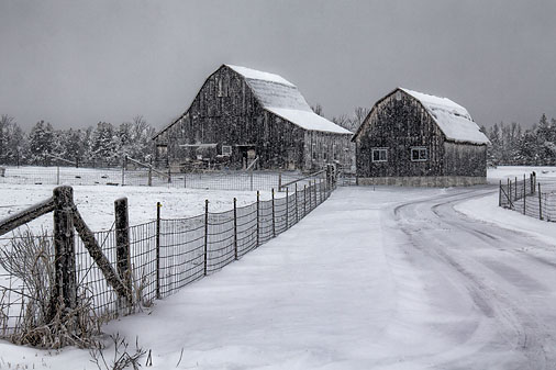 Barns In Snowfall 20111228