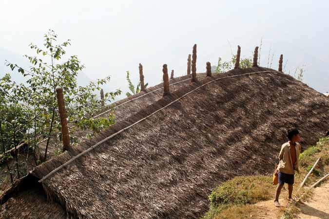roof in Wakka