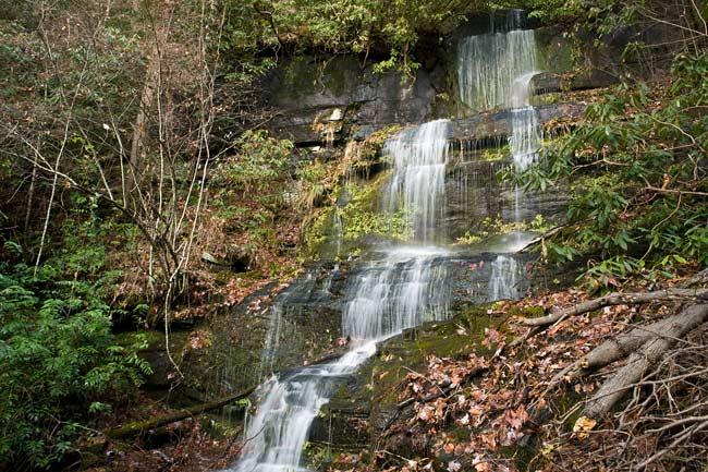 January 1 - Wild Hog Creek, SC