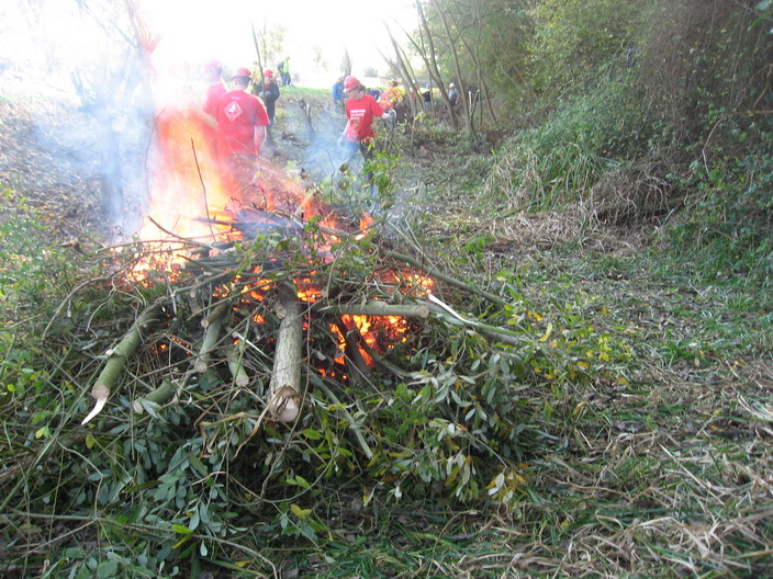 ... burn the debris in small controlled fires...