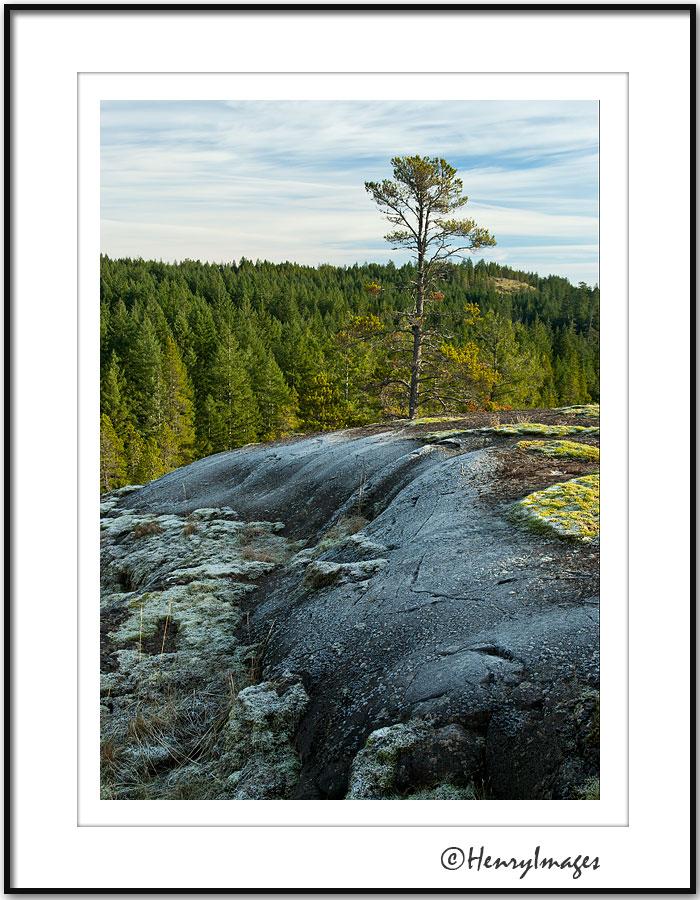 Rousseaus Ridge