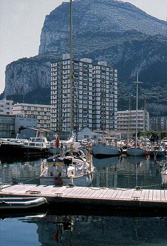 The Marina.jpg