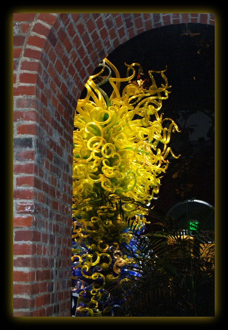 Chihuly at Phipps Conservatory