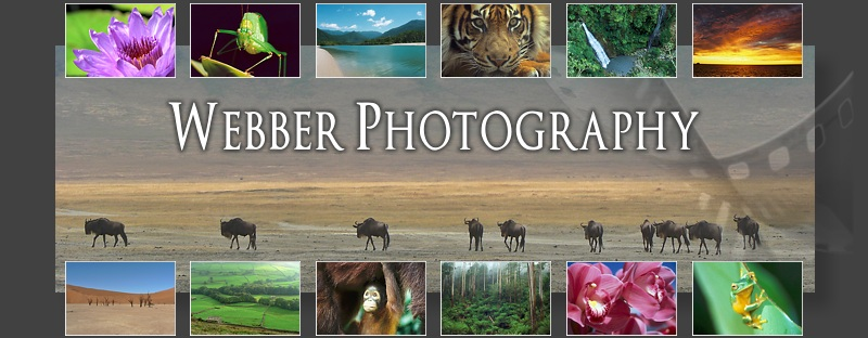 Welcome to Webber Photography, the photographic website of Bruce Webber