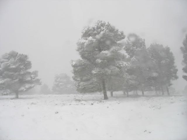 صور الثلوج في ليبيا  93134710