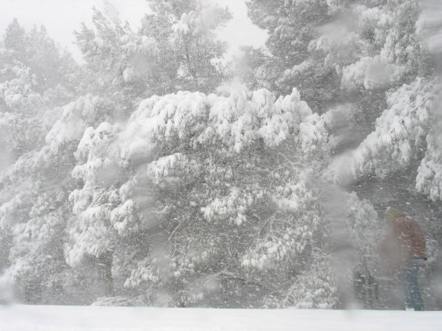 صور الثلوج في ليبيا  93134914