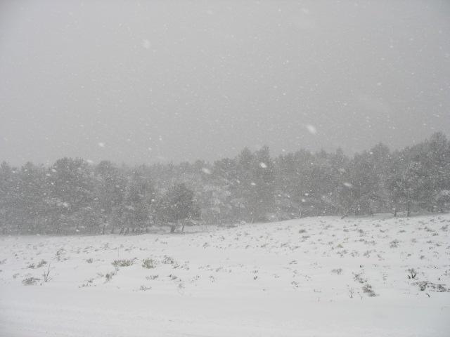 صور الثلوج في ليبيا  93136255