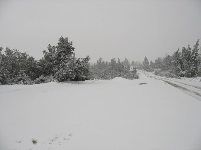 صور الثلوج في ليبيا  93136261