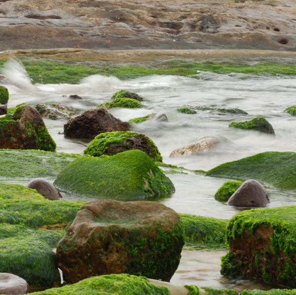 Green Stones are bathed in the Northcoast