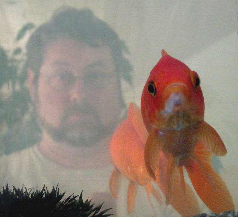 A red fish and I