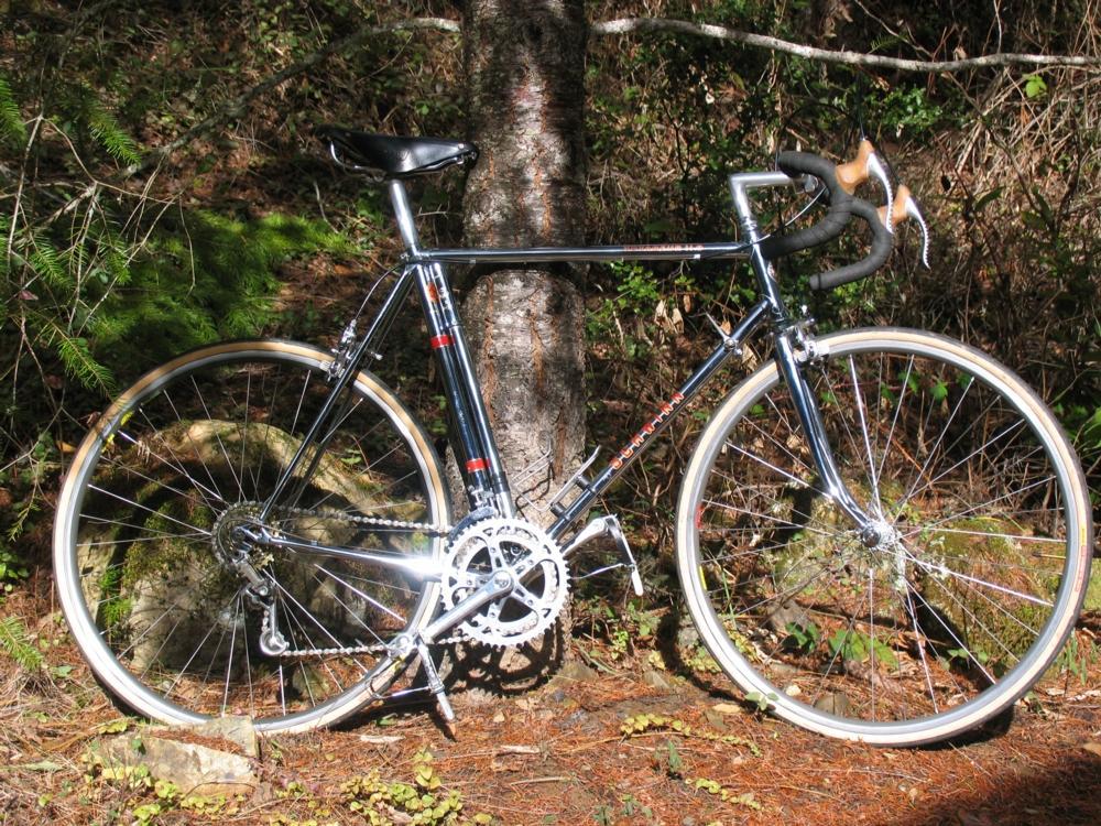 a883a8e4a75 1981 Schwinn Voyageur 11.8 Restoration photo - Deems Burton photos ...