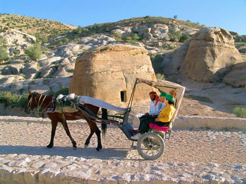 DSC03049 Horse Carriage.jpg