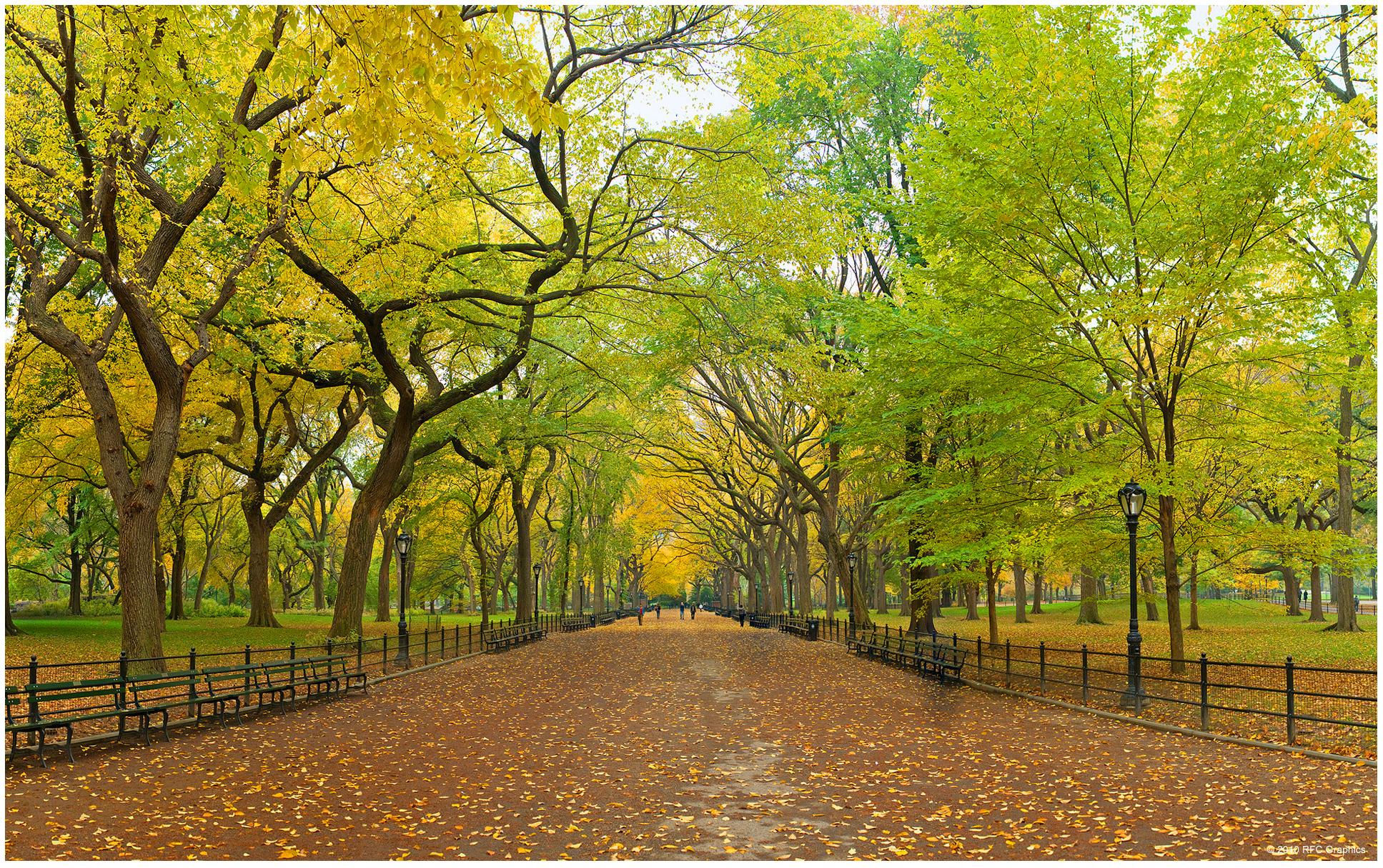 Nueva York Ciudad Espectacular Taringa