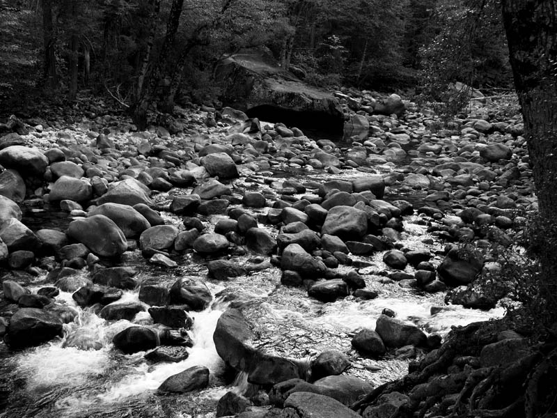 Rocky Riverbed