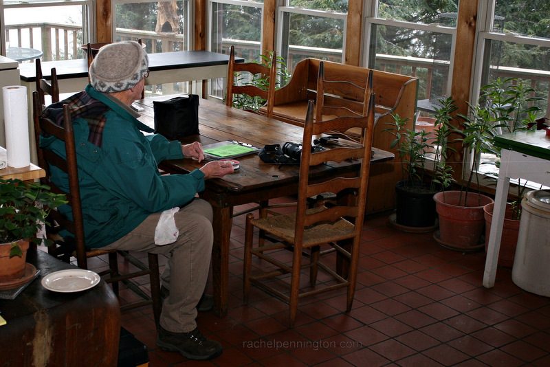 Bob Sargent Waiting For Rufous