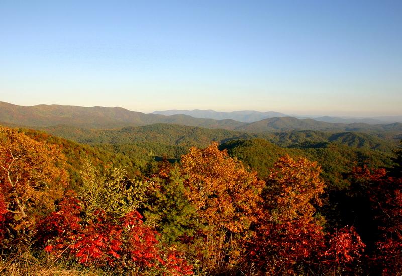 Fall At the Cohutta Mountains