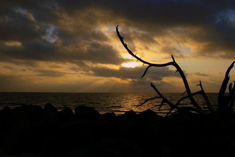 Daybreak at Jekyll Island