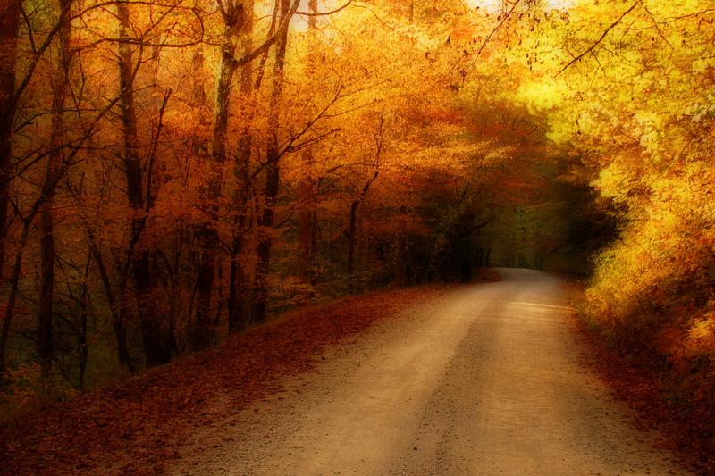 Road Less Traveled II