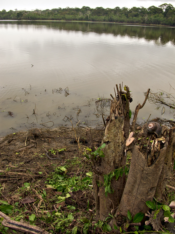 Iquitos_00028.jpg