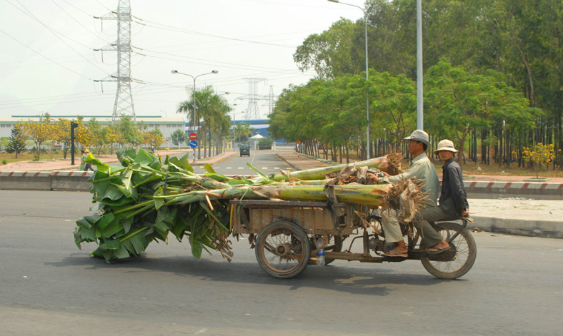 Local delivery business