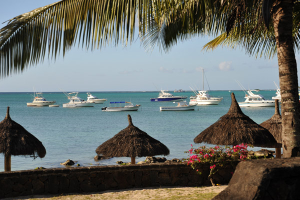 Thatched beach umbrellas, Grand Baie