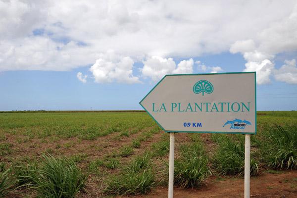 La Plantation Hotel on the west coast of Mauritius at Balaclava, north of Port Louis