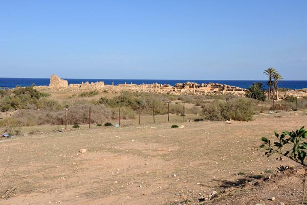 LibyaDec10 1130.jpg