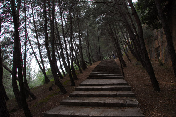 Steps climbing through the wooded hillside to the modern entrance to Saladin Castle