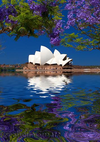 Sydney Opera House with jacaranda