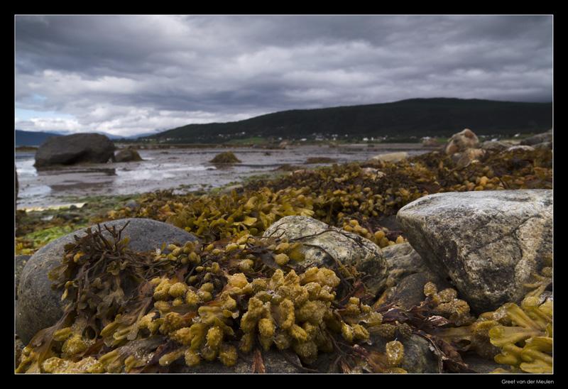 4937 coast near Narvik Norway
