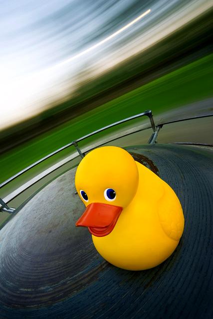 Spinny Duck